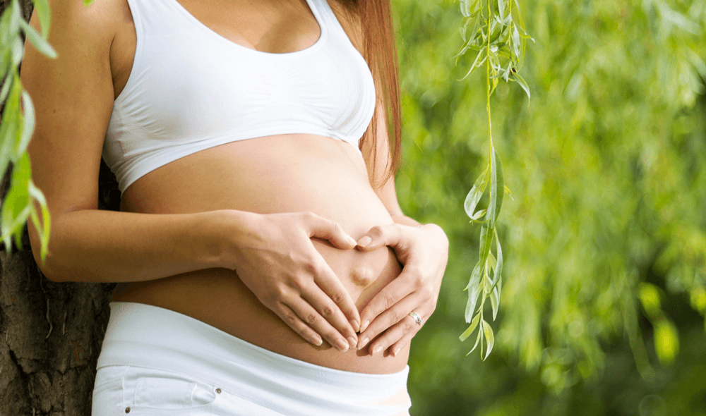 All You Need to Know About Folate?